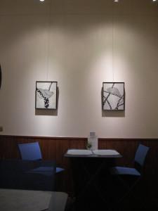 トマツリ展示